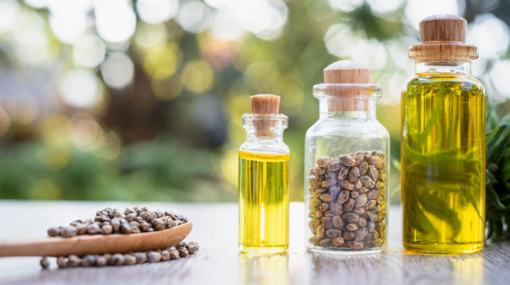 Hemp Oil vs. CBD Oil: Which is a Better Choice for You?