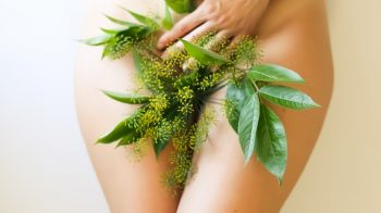 What Is Plant Medicine?