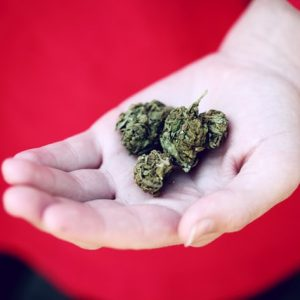 8 Surprising Health Benefits of Medical Marijuana