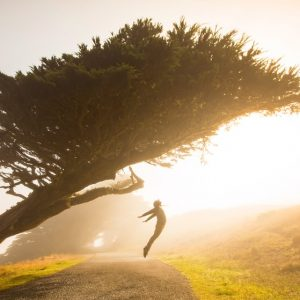 Discover the Importance of Vitamin D