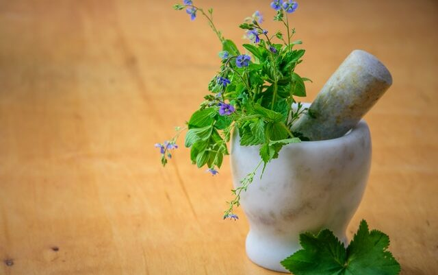 Take Charge of Your Health and Well-being With Naturopathy