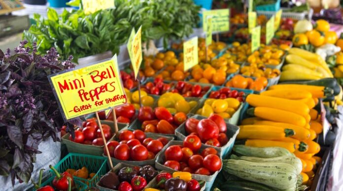 Key Healthy Nutrients Found In Plant Foods